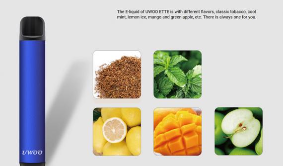 ETTE от компании UWOO Tech. Очередная простенькая система парогенерации из Азии